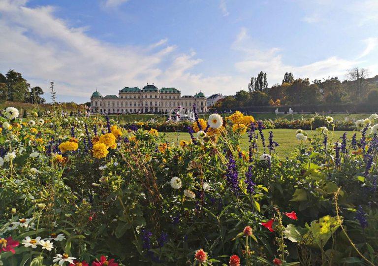 Blumenarrangement vor dem Oberen Belvedere