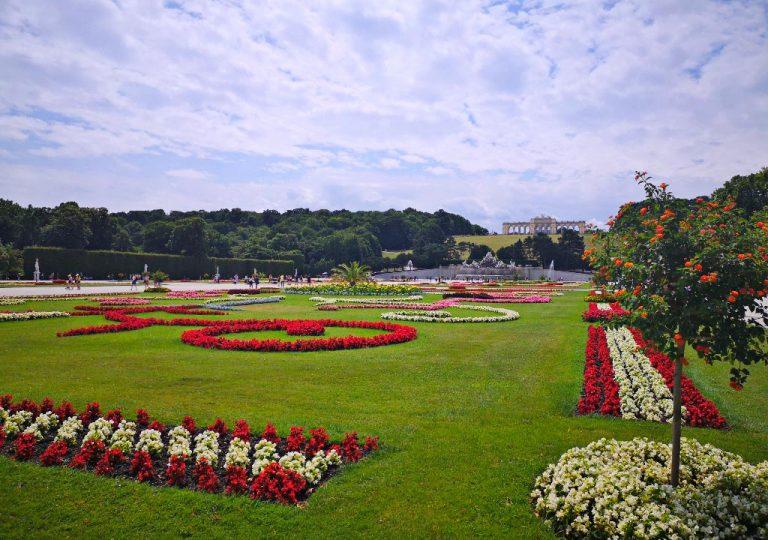 Blumenbeete hinter Schloß Schönbrunn, im Hintergrund Gloriette
