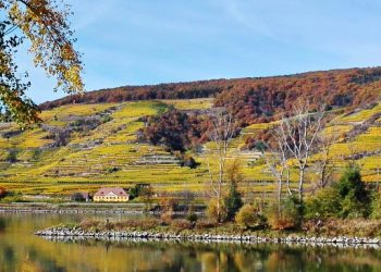 Wachau – UNESCO World Heritage Site